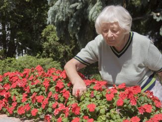Grandmother fixing her garden