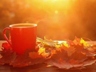 mug and autumn