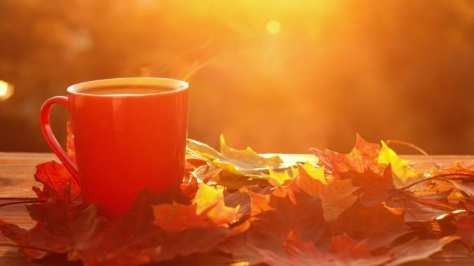 mug and autumn
