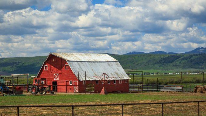 Red barn in farm